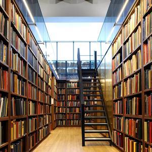 Библиотеки Козульки